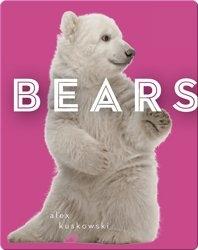 Zoo Animals: Bears