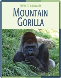 Road To Recovery: Mountain Gorilla