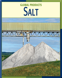 Global Products: Salt