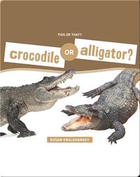 Crocodile or Alligator?