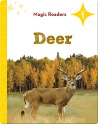 Magic Readers: Deer
