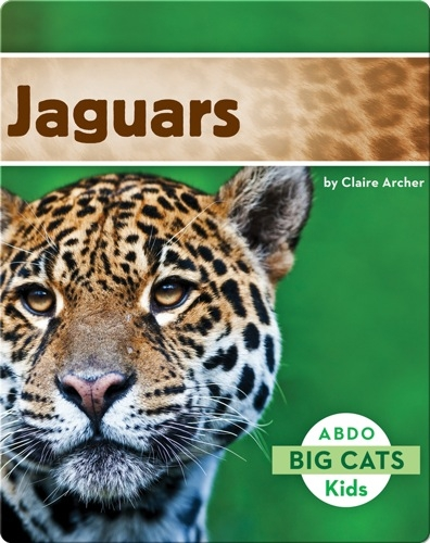 Big Cats: Jaguars