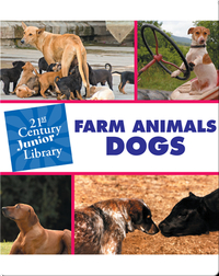 Farm Animals: Dogs