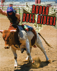 All About The Rodeo: Rodeo Bull Riders