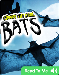 Creepy But Cool: Bats
