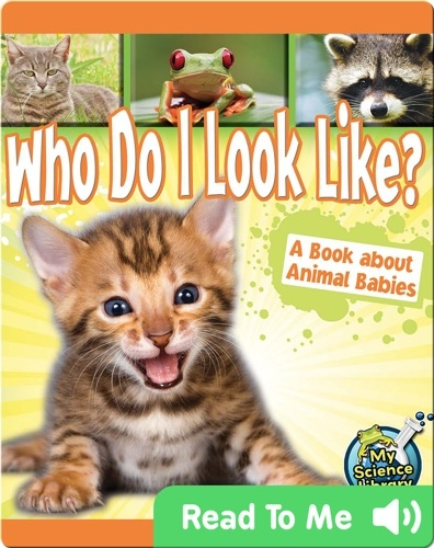 Who Do I Look Like? A Book about Animal Babies