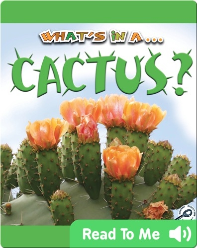 What's In A... Cactus?