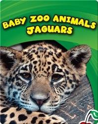 Baby Zoo Animals: Jaguars