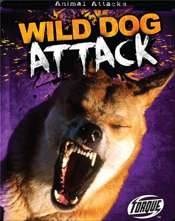 Wild Dog Attack