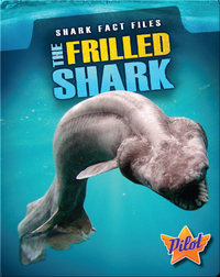 Shark Fact Files: The Frilled Shark
