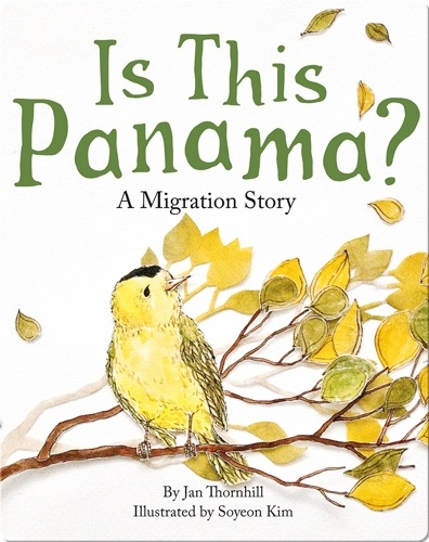 Is This Panama?