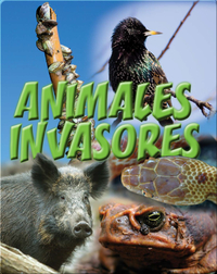 Animales Invasores
