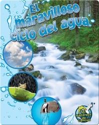 El maravilloso ciclo del agua