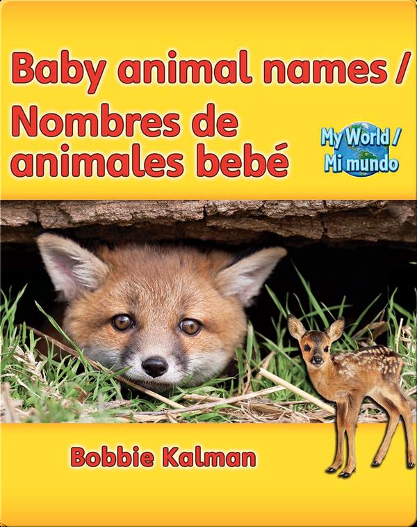 Baby animal names / Nombres de animales bebé