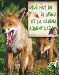 ¿Qué Hay En El Menú De La Cadena Alimenticia? (What's On The Food Chain Menu?)