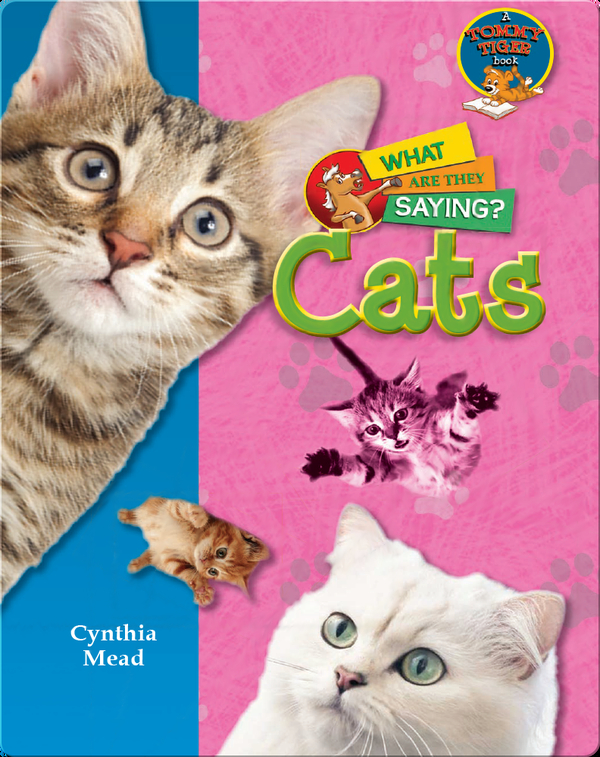 Cats: What Are They Saying?