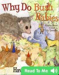 Why Do Bush Babies Have Huge Eyes?