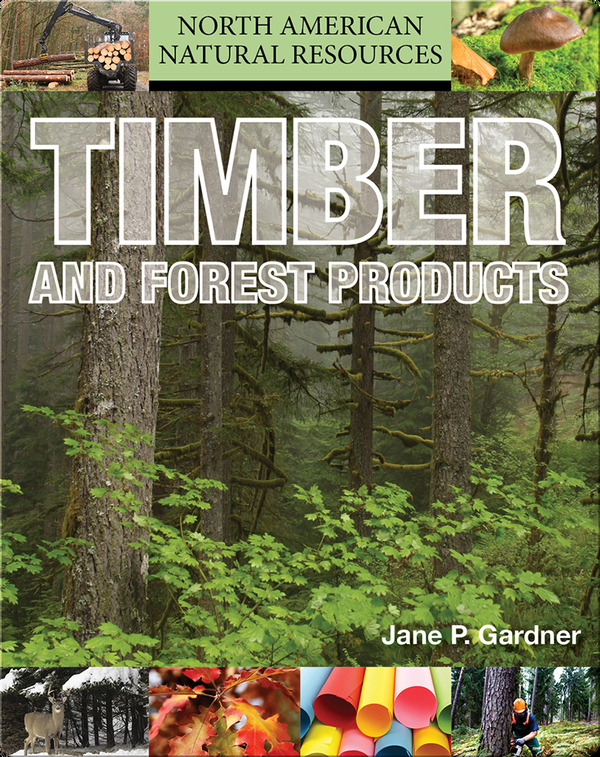 Timber and Forest Products