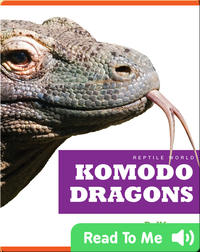 Reptile World: Komodo Dragons