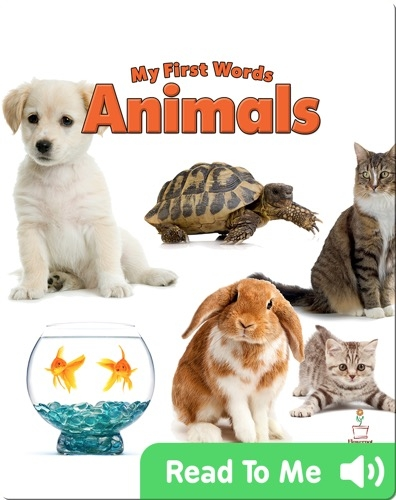 My First Words: Animals