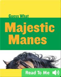 Majestic Manes