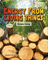 Energy from Living Things: Biomass Energy