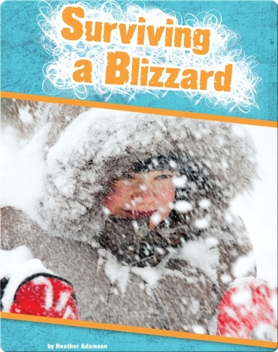 Surviving a Blizzard