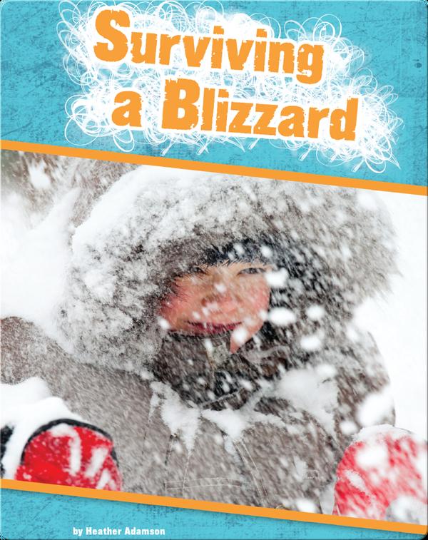 Surviving a Blizzard