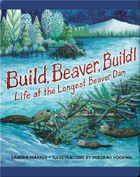 Build, Beaver, Build!: Life at the Longest Beaver Dam