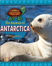 The Animals of Antarctica