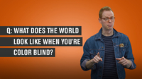 What Does the World Look Like When You're Colorblind?
