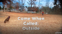 Come When Called 4: Outside | Teacher's Pet With Victoria Stilwell