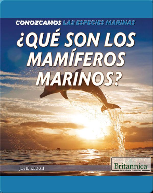 ¿Qué son los mamíferos marinos?