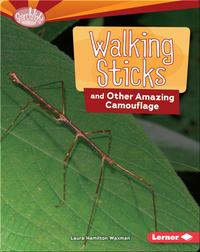 Walking Sticks and Other Amazing Camouflage