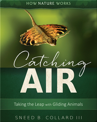 Catching Air: Taking the Leap with Gliding Animals