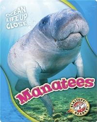 Ocean Life Up Close: Manatees