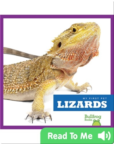 My First Pet: Lizards