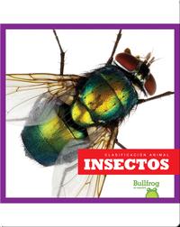 Clasificación Animal: Insectos