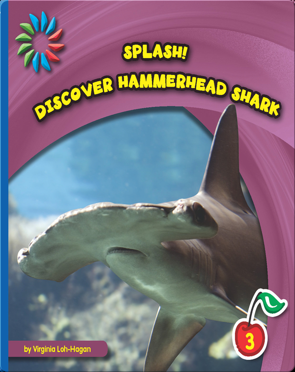 Discover Hammerhead Sharks