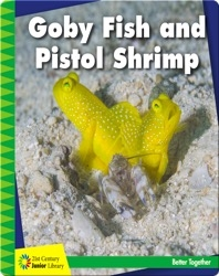 Goby Fish and Pistol Shrimp