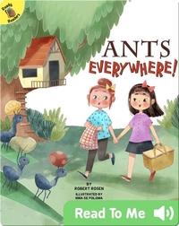 Ants Everywhere!