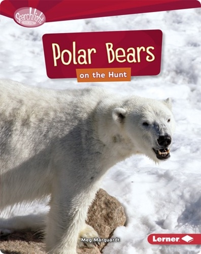 Polar Bears on the Hunt