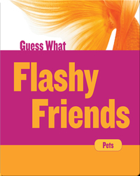 Flashy Friends: Goldfish