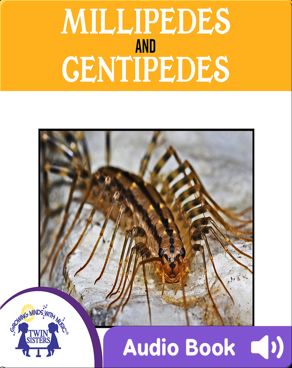 Millipedes and Centipedes