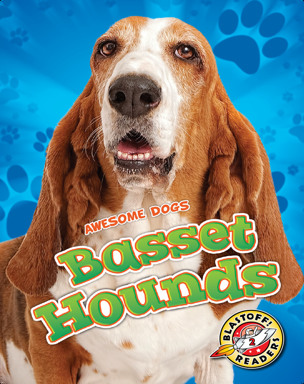 Awesome Dogs: Basset Hounds