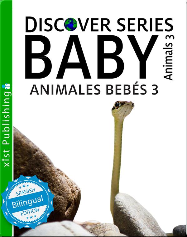 Animales Bebés 3/ Baby Animals 3