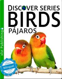 Pájaros/ Birds
