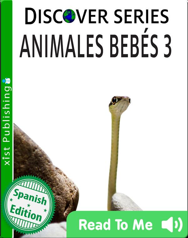 Baby Animales Bebés 3