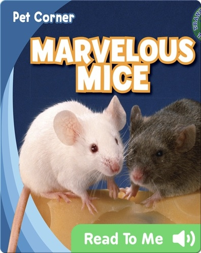 Marvelous Mice
