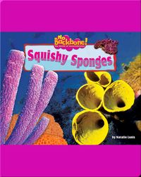 Squishy Sponges